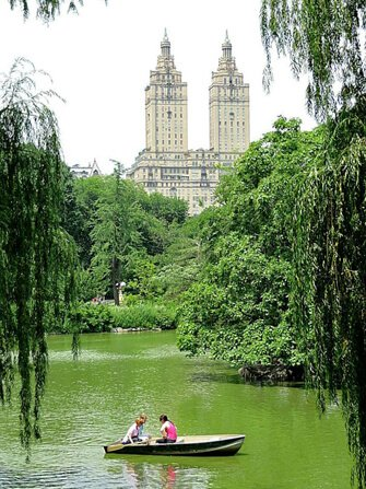 Saint-Valentin-dans-Central-Park-New-York