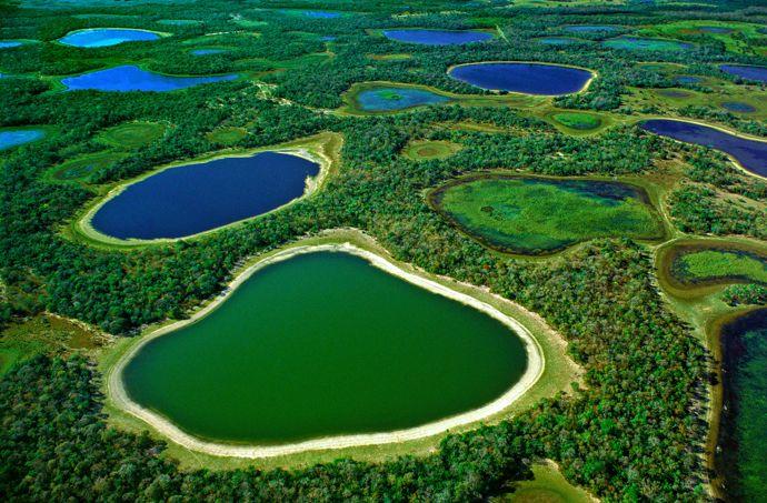 voyage bresil pantanal