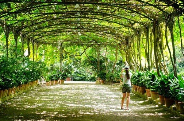 Malaga Jardin Botanique de Conception