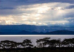 Safari Kenya : Lac Naivasha Crescent Island